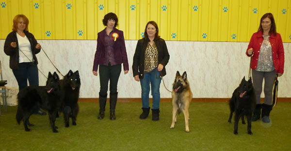 Best in Show winners 19 October 2014