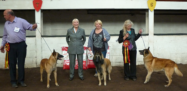 Top winners at the Championship Show held on 15 June 2013