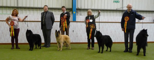 Main winners of the open show held on 20 October 2013